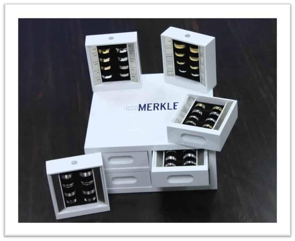 https://www.hcf-merkle.de/wp-content/uploads/2021/02/Merkle_Ring_Konzept_4.jpg